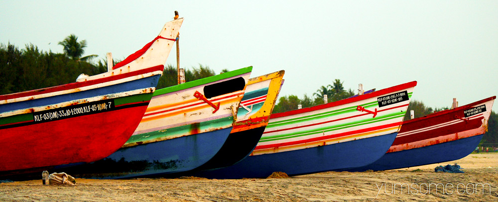 alleppey fishing boats
