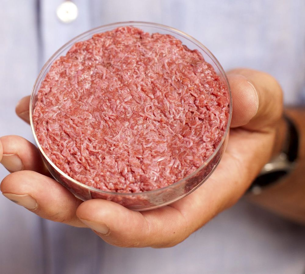 Forum on this topic: Can a Lab-Grown Burger Be Better Than , can-a-lab-grown-burger-be-better-than/