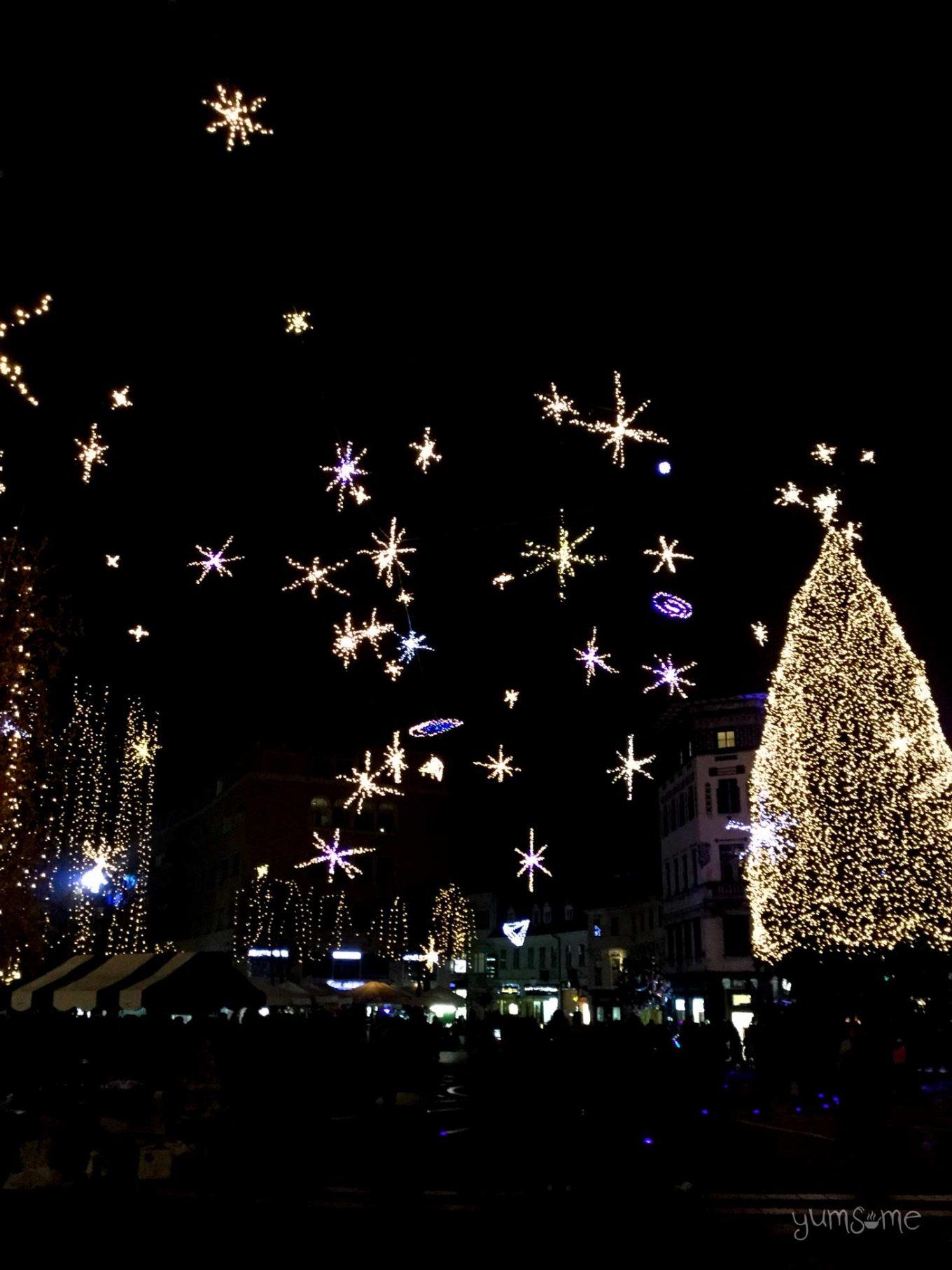 Ljubljana's Christmas market is truly magical!   yumsome.com