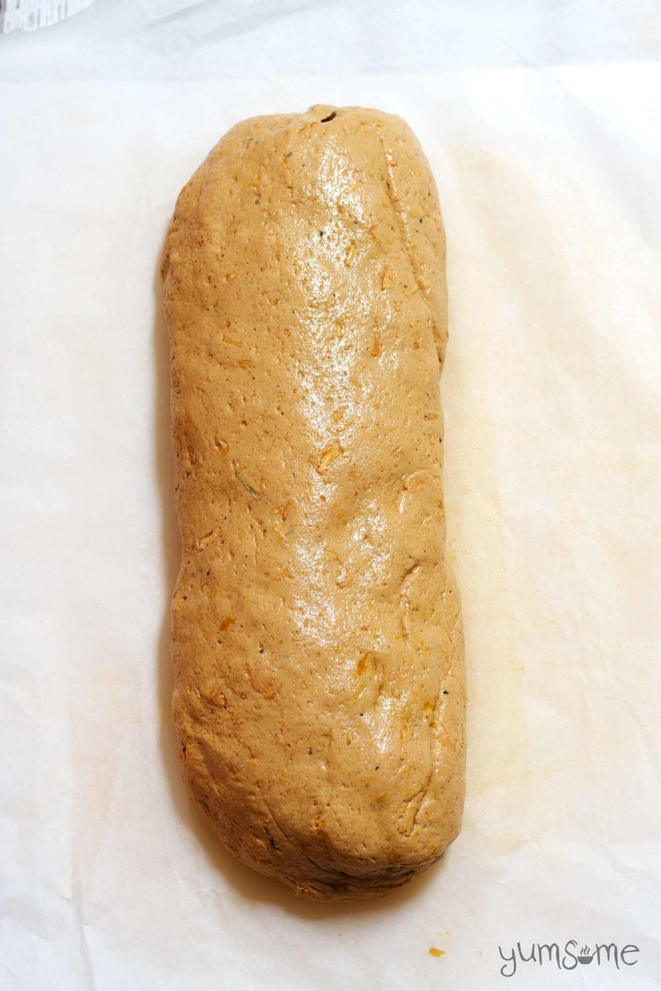 Seitan dough rolled into a large log shape, on a white background.