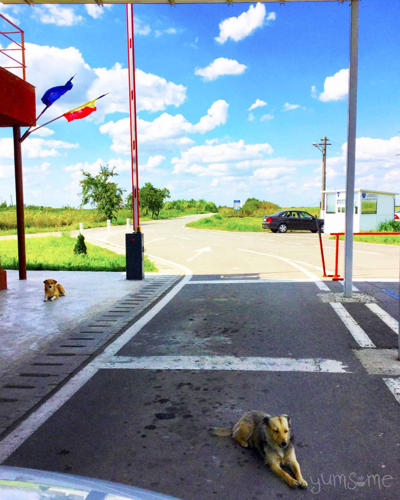 Romanian border control! | ©2016 yumsome.com