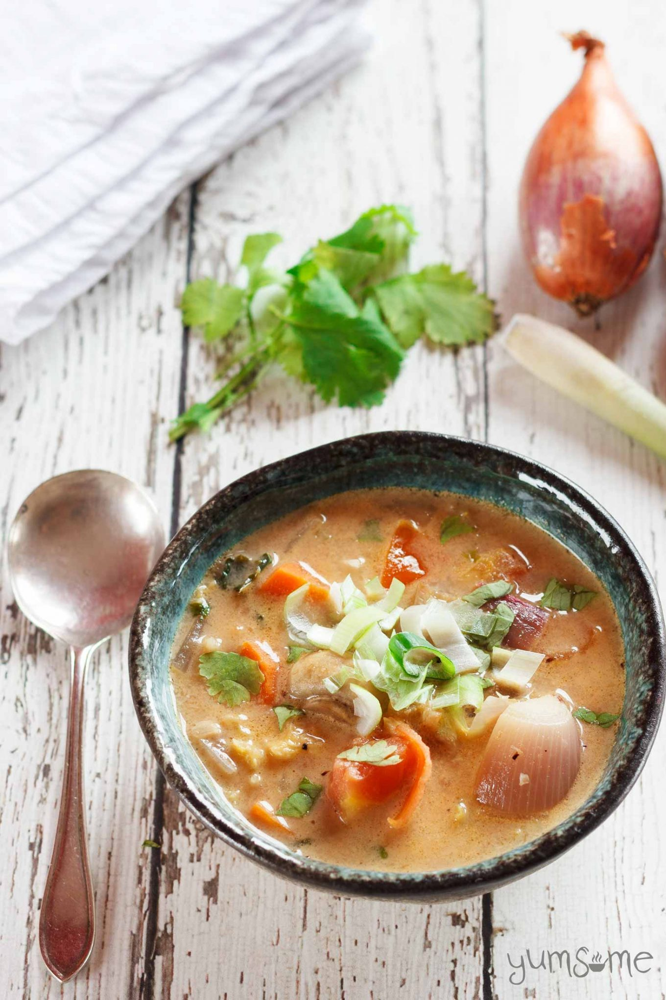 Fragrant and spicy, tom yam - a delicious hot and sour soup - is deservedly one of Thailand's most famous dishes. | yumsome.com