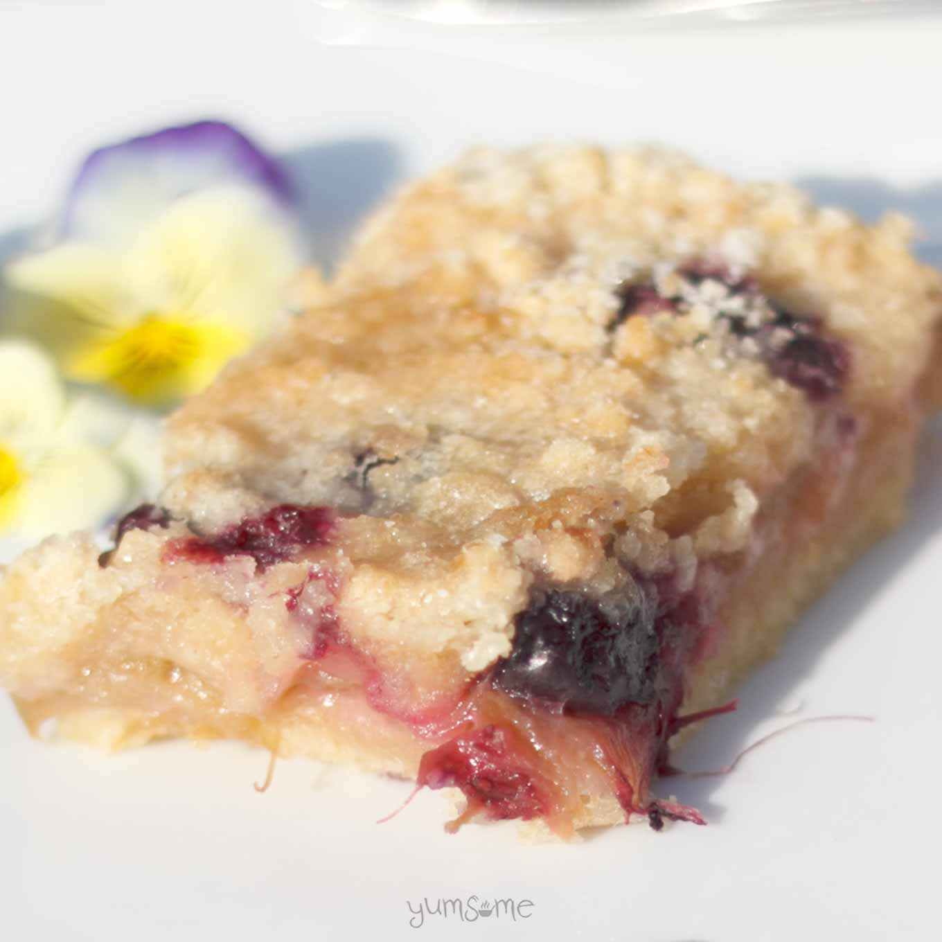close-up of rhubarb crumble shortbread bars | yumsome.com