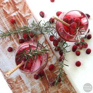 ginger cranberry fizz