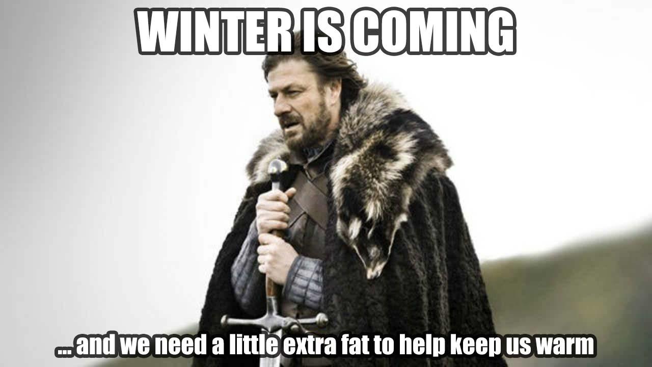 Ned Stark winter is coming meme