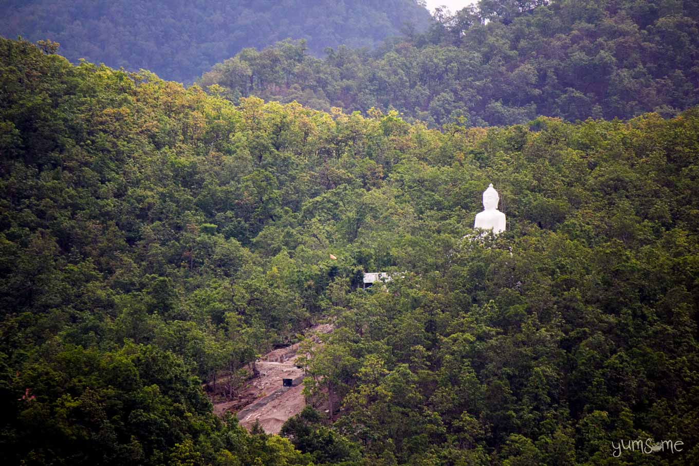 Giant white Buddha statue emerging from the jungle.