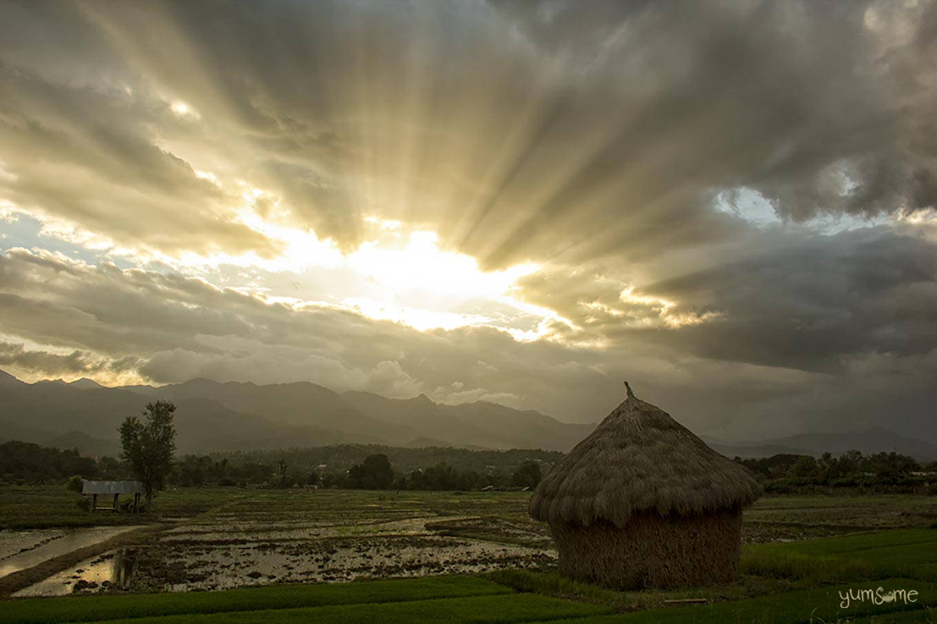 A haystack in a rice field at sunset, with sun rays coming through a break in the cloud.