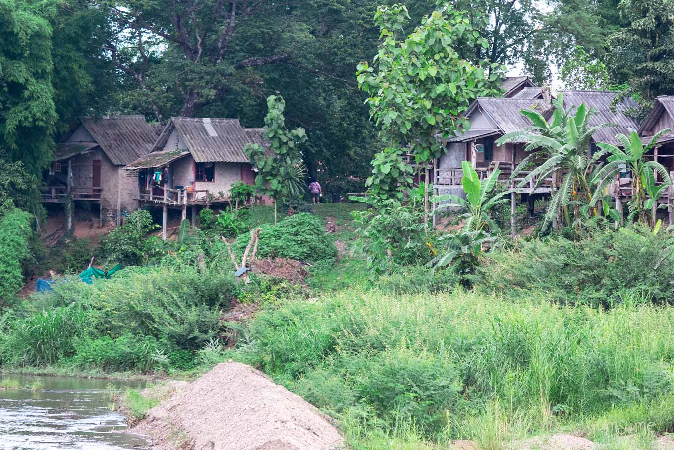 Traditional riverside wooden houses on stilts in a Northern Thai village, surrounded by lush jungle foliage.
