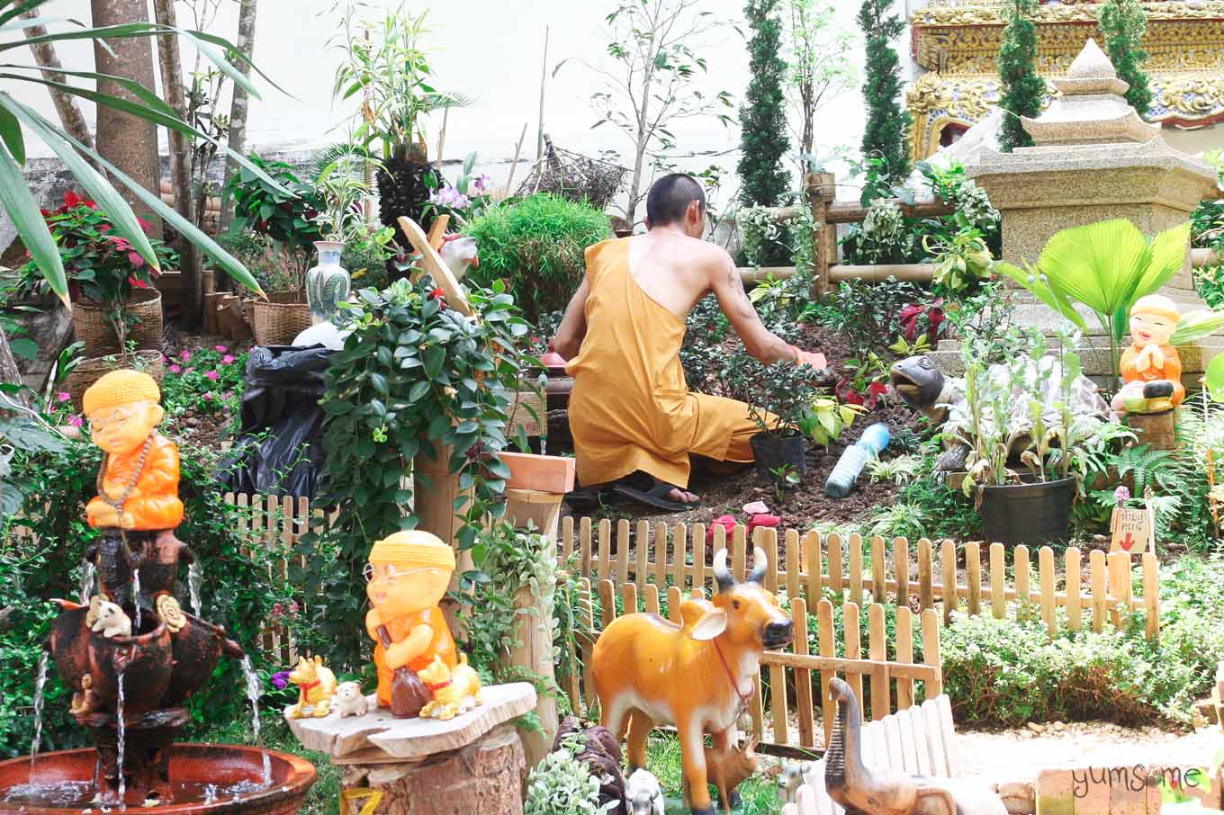 A Buddhist monk gardening, surrounded by cute Thai Buddhist garden ornaments.