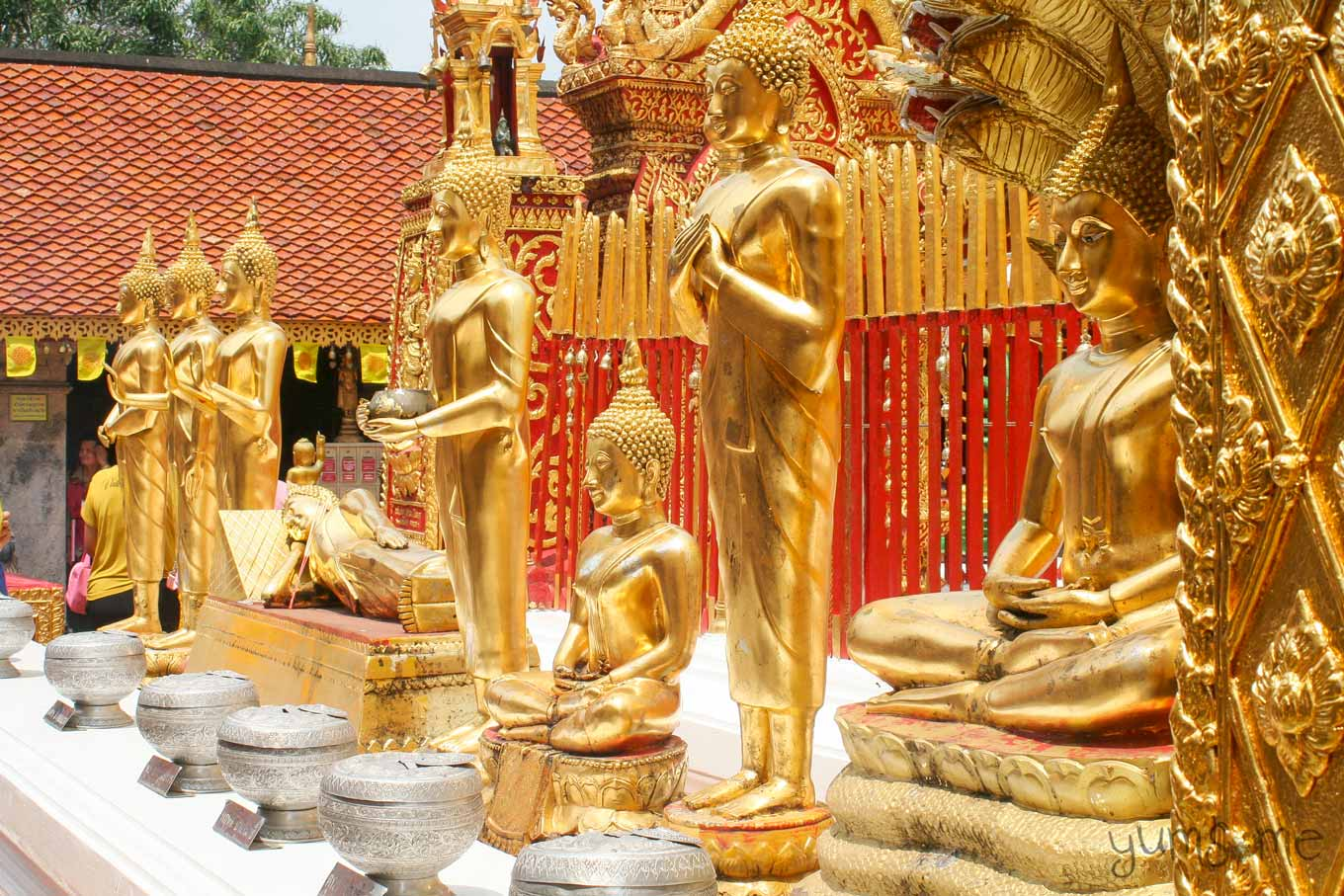 A row of golden Buddhas depicting various stages of Buddha's enlightenment.