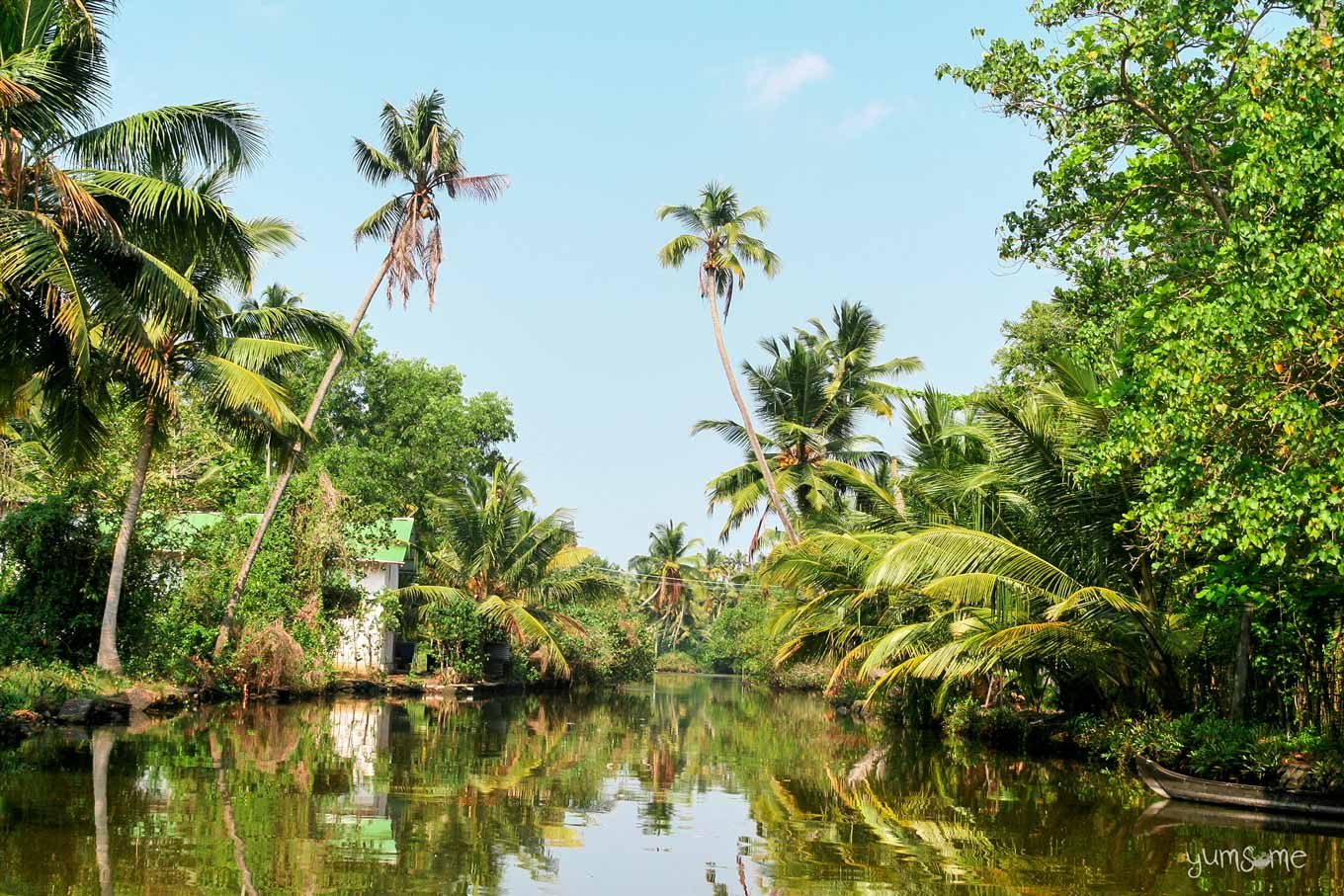 Alappuzha backwaters as seen from a boat.